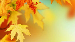 cute fall computer wallpaper autumn leaves wallpaper wallpapers browse