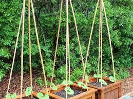 14 veggie garden planter boxes 12 outstanding diy planter box