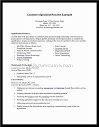example of resume summary