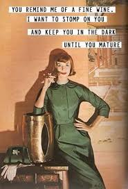 Housewife Meme - funny 1950s sarcastic housewife memes fun
