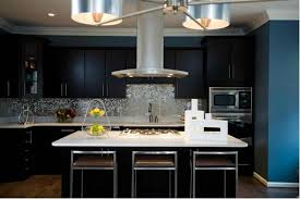 Black Cabinets Kitchen 15 Contemporary Kitchen With Black Cabinets Rilane