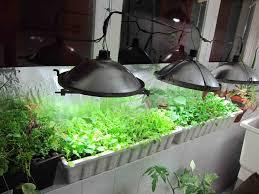 Windowsill Greenhouse Indoor Greenhouse Greenmoxie