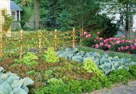 monet u0027s vegetable garden buckscountymagazine com