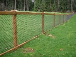 Fencing Ideas For Backyards by Nice Way To Dress Up The Typical Chain Link Fencing Fences And