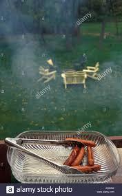 backyard picnic bbq barbeque dog lawn chairs green grass
