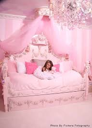 Princess Canopy Bed Princess Canopy Bed Cheap Bed Frames As Size Bed Frame