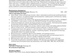 top resume professional resume writers nyc sle johnson sle of