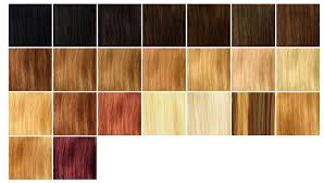 light strawberry blonde hair color chart strawberry blonde hair color chart light medium hair styles ideas