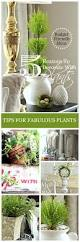 Home Decoration Stuff 271 Best Budget Friendly Home Decor Images On Pinterest Budget