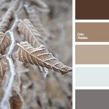 3437 best color palettes images on pinterest color palettes