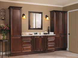 bathroom cabinets new dark cabinets bathroom home design image