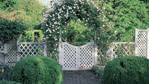 pergola simple arched trellis for grapes or pole beans amazing