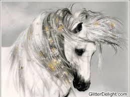 afghan hound gif glitter delight nature glitter graphics the glitter graphics maker