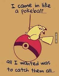 Funny Pikachu Memes - pokemon go blackberry pok礬mon and android
