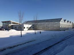 Backyard Farms Nexus Greenhouse Systems Projects Backyard Farms