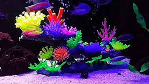 Glo In The Dark Fish Tank & Aquarium Decorations