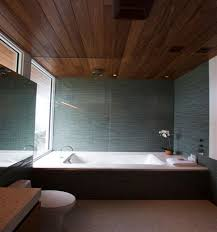 ceiling tiles bathroomherpowerhustle com herpowerhustle com