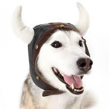 helmet dog hat from bowwowsbest com dog caps hats and visors