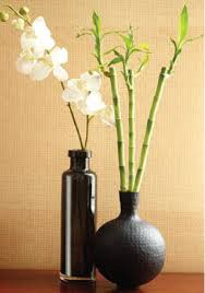 Diy Tips To Create A Relaxing Zen Space In Your Home Indoor