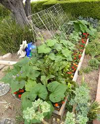 a green harvest monday june 4 2012 lou murray u0027s green world