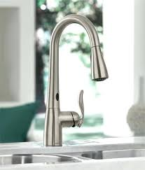 Sink Faucets Lowes Peerless Kitchen Sink Faucet Parts Fixtures Lowes Grohe