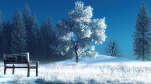 winter nature wallpapers full hd 1080p winter wallpapers hd desktop backgrounds 1920x1080