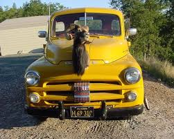 336 best dodge trucks and new images on dodge