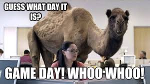 Hump Day Camel Meme - hump day camel memes quickmeme