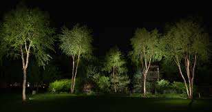 Landscape Lighting Company Are You Asking The Right Questions To Find A Qualified Landscape
