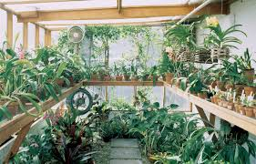 Vegetable Container Garden - vegetable container gardening greenhouse why should we support