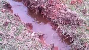 yard drainage the beginnings of our dry creek bed youtube