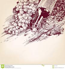 wine vector grapes with a bottle of wine vector illustration royalty free
