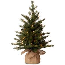fine design real tabletop christmas tree premium grade mail order