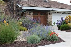 landscaping with native plants village matters surfing farmers go native coastal real estate guide