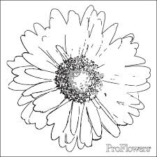 flower coloring pages kids proflowers blog