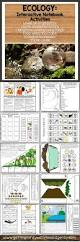 best 25 ecology ideas on pinterest planet smoothie image naam
