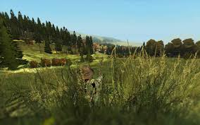 Dayztv Map Admiring The Nature Dayz Tv