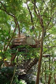 treehouses colossal
