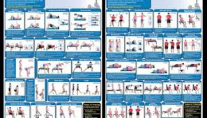 Chest Workouts Without Bench Best Home Workout Equipment To Build Muscle In Your Home