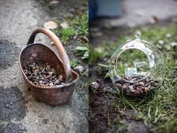 side project make your own succulent terrarium u0026 planter