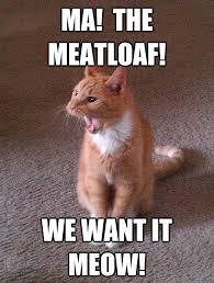 Mom The Meatloaf Meme - ma meatloaf cat memes memes pics 2018