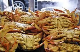 cuisiner le crabe choisir et cuisiner crabe le choix notrefamille com