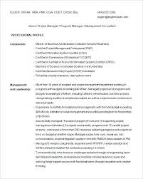 resume template sles consulting resume template resume sles sales consultant resume