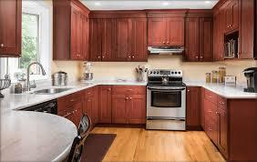 New Jersey Kitchen Cabinets Wood Types Kitchen Cabinet Ideas