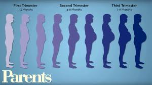 Is It Good To Exercise Before Bed Pregnancy Workouts Best 10 Minute Workout Parents Youtube