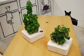 Click And Grow by The Future Of Home Living Exhibition New York City Usa The