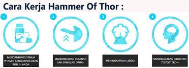 hammer of thor medan klinikobatindonesia com agen resmi vimax