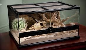 exo terra low profile glass terrarium reptile habitats