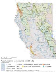 Chico State Map by Oncorhynchus Keta Pisces