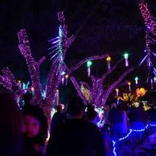 zoo lights houston prices zoo lights 199 photos 99 reviews festivals 6200 hermann park